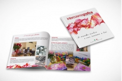 Catalogo intercosmografica copy