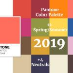 Sai quali sono i Trend grafici del 2019?